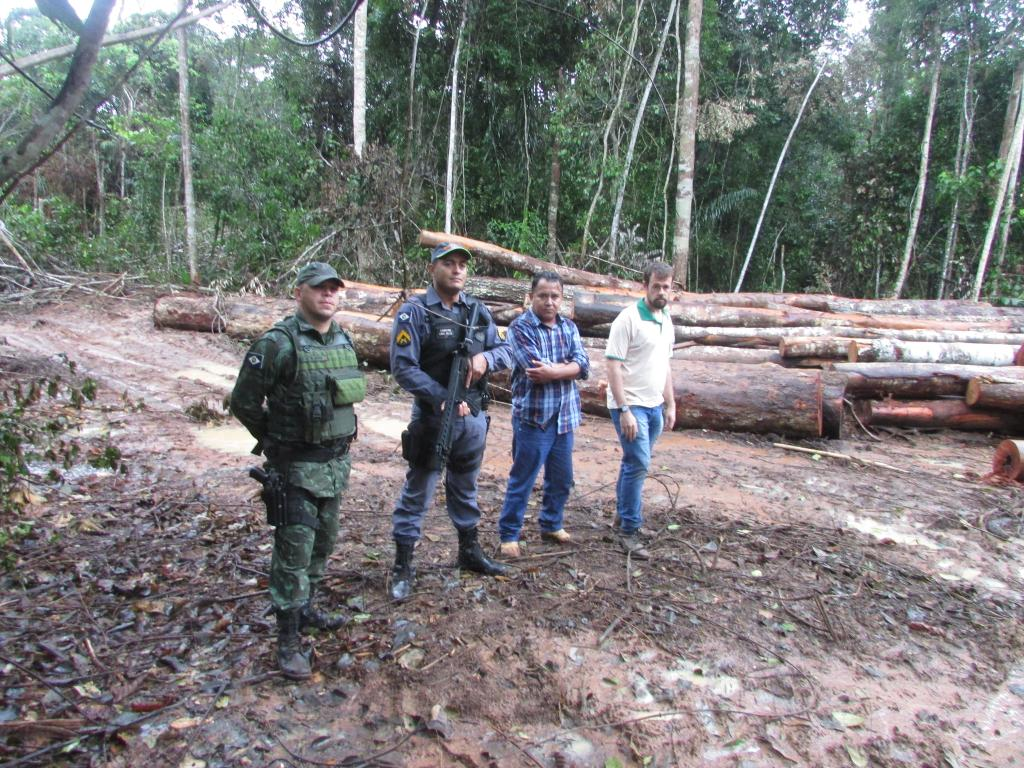 Apreensão de madeira em Nova Maringá