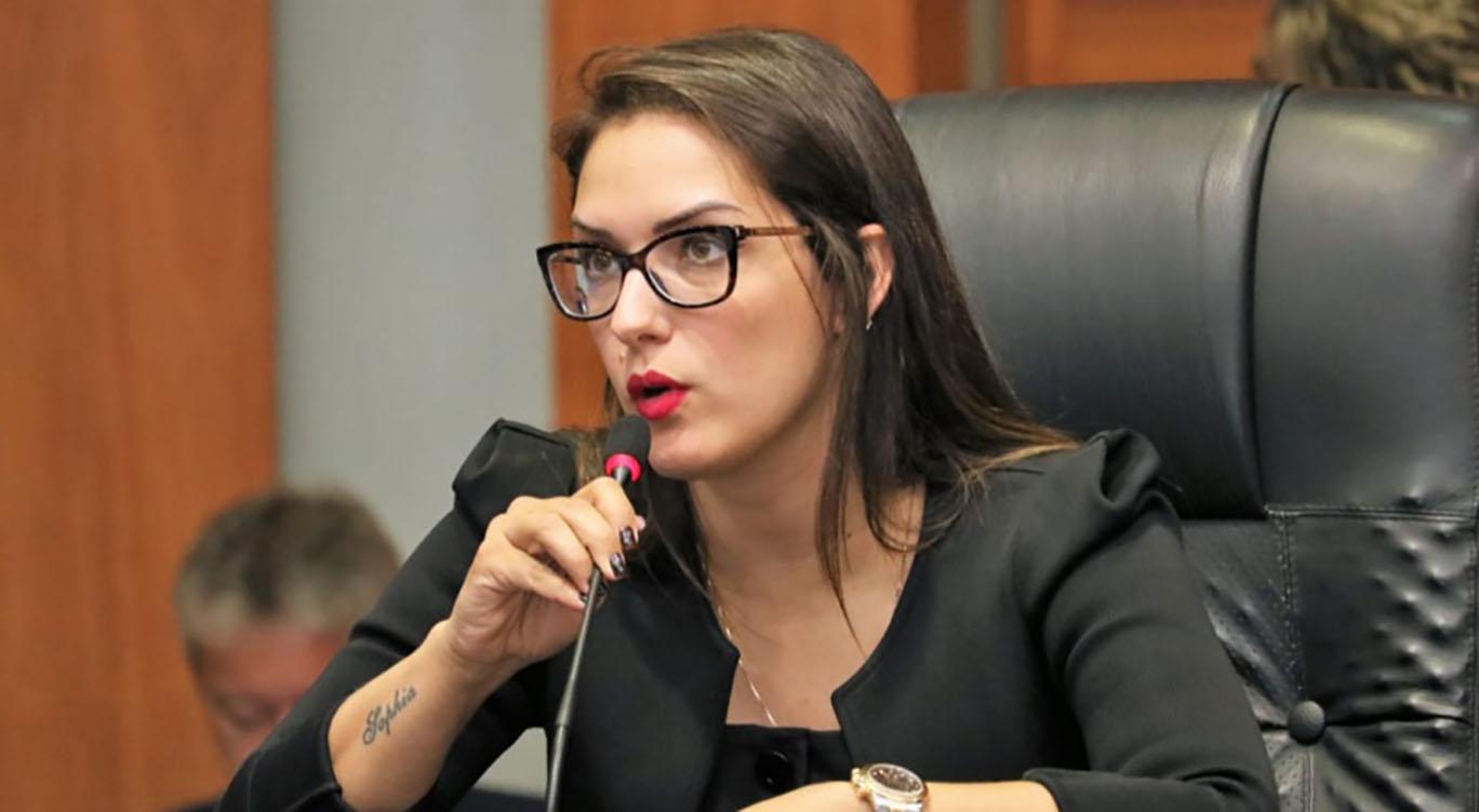 Janaina Riva deputada